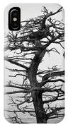 Bare Cypress IPhone Case
