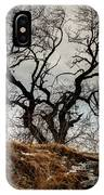 Bare Tree On The Hill IPhone Case
