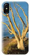Bare Tree On The Spit IPhone Case