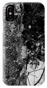 Bark And Trees In Winter IPhone Case
