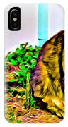 Barn Kitty IPhone Case