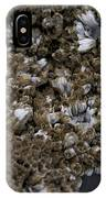 Barnacle IPhone Case