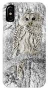 Barred Owl Snowy Day In The Forest IPhone Case