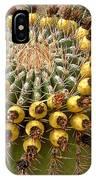 Barrel Cactus Bearing Fruit At El Mirador Rv Resort In San Carlos-sonora-mexico IPhone Case