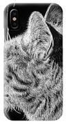Basking II IPhone Case