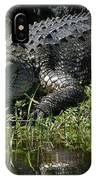 Basking On The Bank IPhone Case