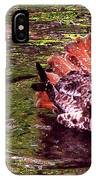 Bathing Red Tailed Hawk IPhone Case