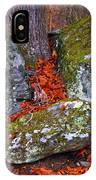 Battlefield In Fall Colors IPhone Case