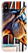 Bay In Stall IPhone Case