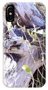 Bayberry And Driftwood IPhone Case
