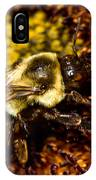 Bee Pollunating IPhone Case