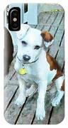 Beach Dog 1 IPhone Case