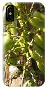 Bear Fruit IPhone Case
