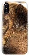 Bear Hug IPhone Case