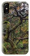Beautiful And Bare Japanese Lace-leaf Maple Tree IPhone Case