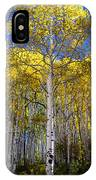 Beautiful Aspen Tree IPhone Case