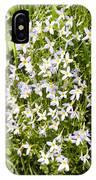 Beautiful Azure Bluets Appalachian Trail IPhone Case