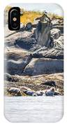 Seals And Rock Scupltures IPhone Case