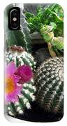 Beautiful Blooming Cactuses IPhone Case