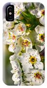 Beautiful Blossoms IPhone Case