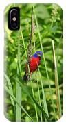 Beautiful Bunting IPhone Case
