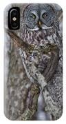 Beautiful Great Gray IPhone Case