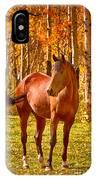 Beautiful Horse In The Autumn Aspen Colors IPhone Case