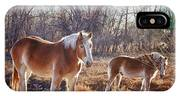 Beautiful Horses IPhone Case