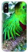 Beautiful Quetzal 2 IPhone Case