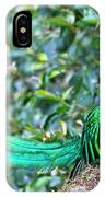 Beautiful Quetzal 3 IPhone Case