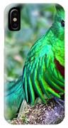 Beautiful Quetzal 4 IPhone Case