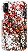 Beautiful Rowan 12 IPhone Case