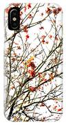Beautiful Rowan 4 IPhone Case