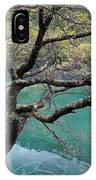 Beautiful Tree Over Blue Water IPhone Case