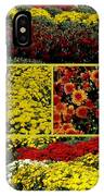 Beauty Of The Fall Mums IPhone Case