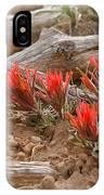 Beauty On 25 Mesa  IPhone Case