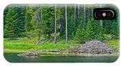 Beaver Dam In Heron Pond In Grand Teton National Park-wyoming IPhone Case