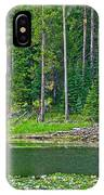 Beaver Dam In Heron Pond In Grand Teton National Park-wyoming IPhone Case