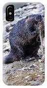 Beaver Sharpens Stick IPhone Case