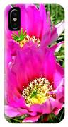 Beaver Tail Cactus Painting IPhone Case