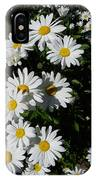 Bed Of Daisies IPhone Case