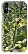 Bee And Pollen IPhone Case