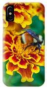 Bee My Friend Miss Marigold IPhone Case
