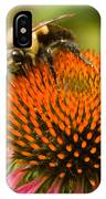Bee On Coneflower IPhone Case