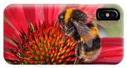 Bee On Red Coneflower 2 IPhone Case
