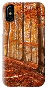 Beech Forest IPhone Case