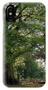 Beech Tree Britain IPhone Case