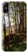 Beech Trees - Autumn IPhone X Case