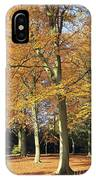 Beech Trees IPhone Case