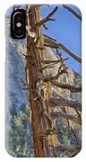 Beetle Barren Pine IPhone Case